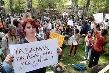 Solidarity protests with Gezi Park held across Turkey