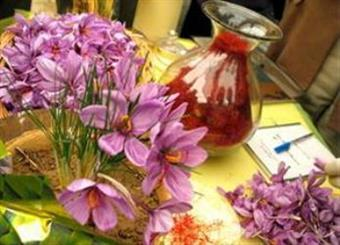 New emerging rivals threaten Iran's saffron market