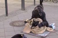 Many Germans live on social assistance