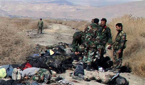 Tens of Militants Killed in Army Ambush in Lattakia Countryside