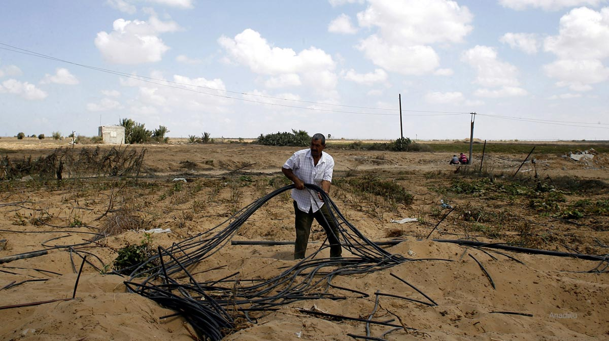 Palestinian farmers struggle with damaged agricultural land