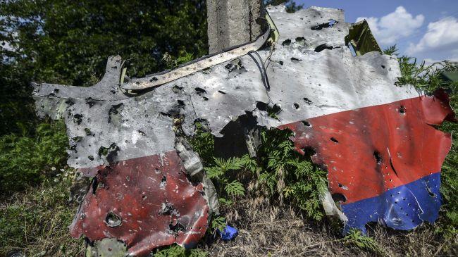 386330_MH17-Israel-James-Henry-Fetzer
