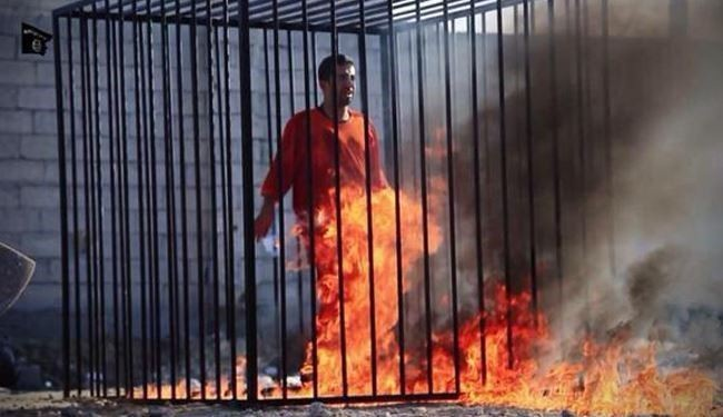 Iran and world Condemns Savage Murder of Jordanian Pilot
