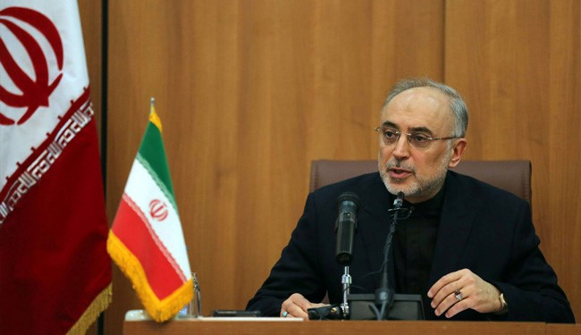 Salehi: Iran Focuses on Commercial Nuclear Activities