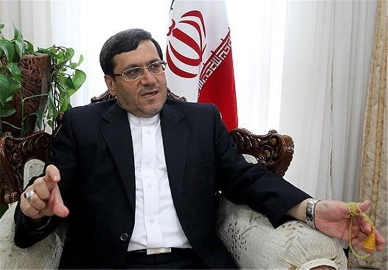 Iraq's Visa for Arbaeen Pilgrims Mandatory: Iranian Diplomat