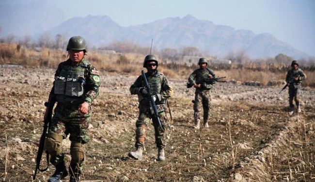 Afghan Army Kills 29 ISIS Terrorists in Nangarhar Operation