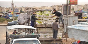 trucks-loaded-with-food-arrive-to-Aleppo-4-300x150