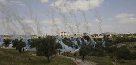 Photo of Confrontations between protesters & IOF in Bilin