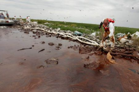 Photo of US report undermines BP spill effects