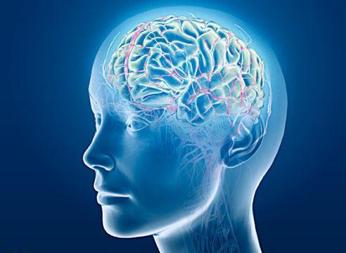 Photo of Iran ranks first in brain surgery in region