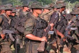 Photo of Video-PSUV concerned over venezuela public safety deal