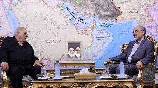 Photo of Israel is main loser of regional developments: Salehi