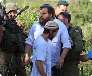 Photo of Report details Slaughterer Israeli violations and seizure of West Bank land