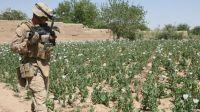 Photo of 'US seeks to control Afghan drug trade'