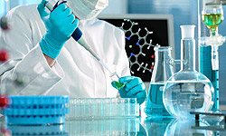 Photo of Iranian Scientists to Produce Human Organs through Supplementation of Stem Cells