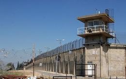 Photo of Palestinian Prisoner Dies behind Zionist Bars, Protests Erupted