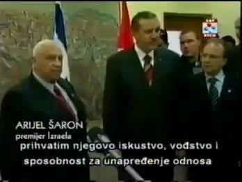 erdogan visited theodor herlz