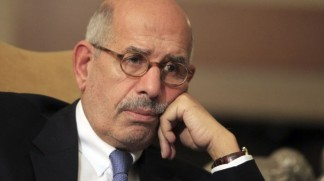 ElBaradei not appointed PM