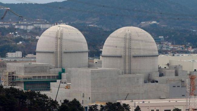 S Korea halts nuclear reactor over safety concerns