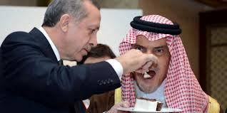 Photo of Video- It is understood from speech by Deputy of Erdogan that Terrorists used Chemical Weapon in Syria
