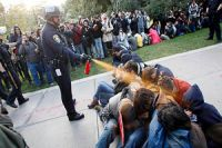 Occupy pepper-spraying cop gets