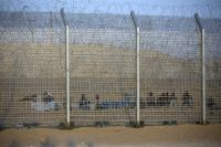Photo of Slaughterer Zionist Israel moves African migrants to new facility