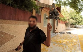 Photo of BREAKING- Qassam and Islamic Jeehad downed two drones of Israel.