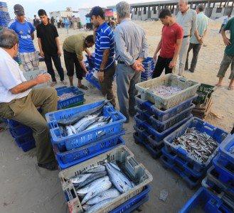 Photo of Photo: Gaza fishermen take to the  sea after heavy war