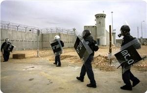 Photo of Palestinian prisoners falling prey to Israeli hounding