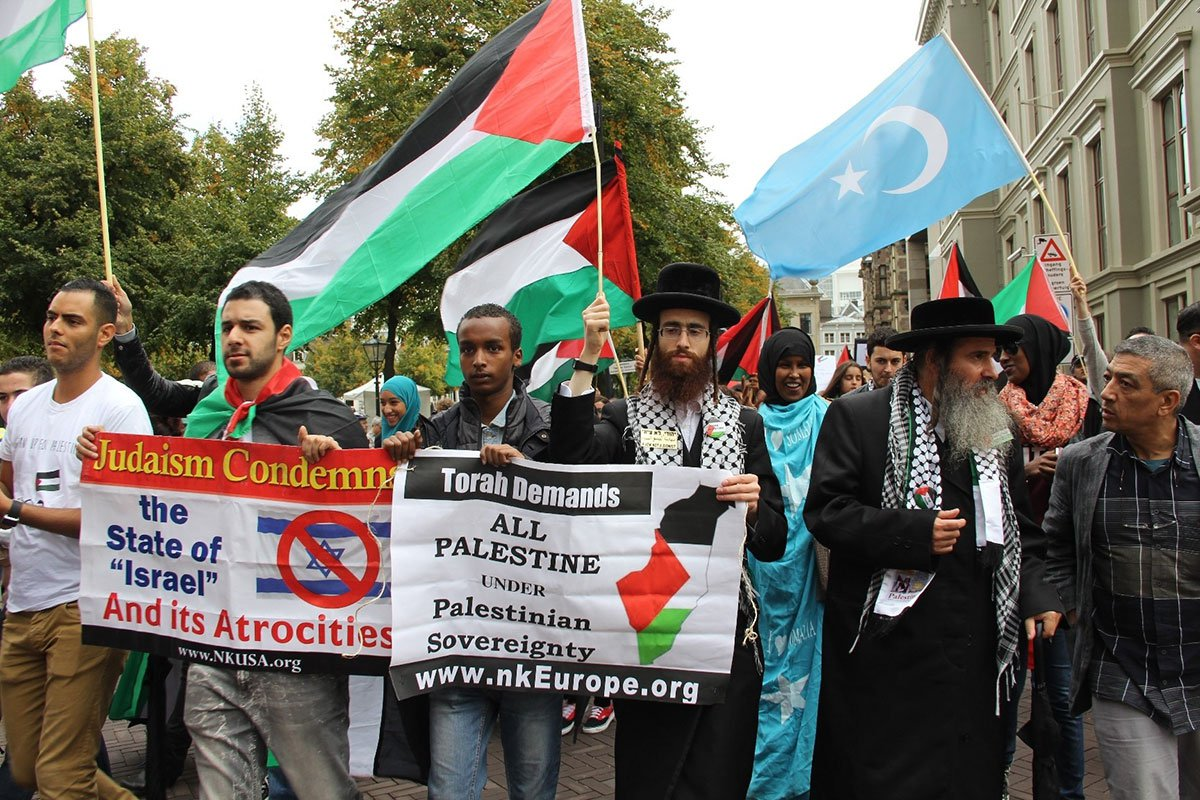 protester-in-netherlands-against-israel