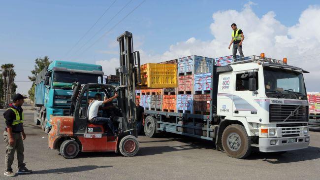 382367_Gaza-aid