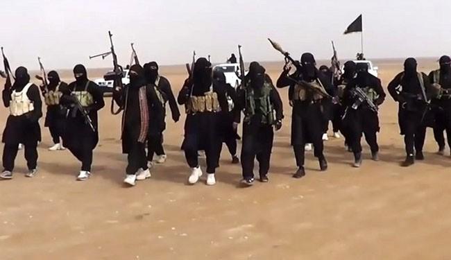Half of ISIL leaders killed in Iraq: Iraqi commander