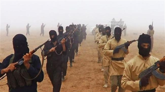 Photo of France confirms hundreds of nationals fighting as terrorists in Mideast