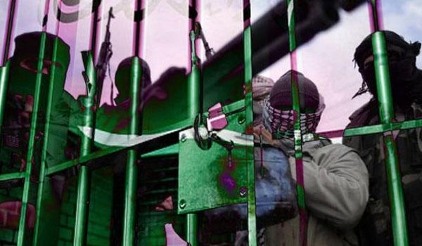 Photo of Zionist Saudi Regime Releasing Al-Qaeda Prisoners for Terrorist Mission in Yemen