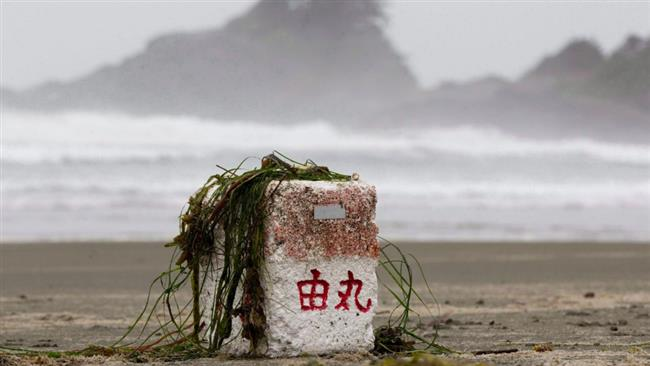 Photo of Fukushima radiation found off Canada's west coast
