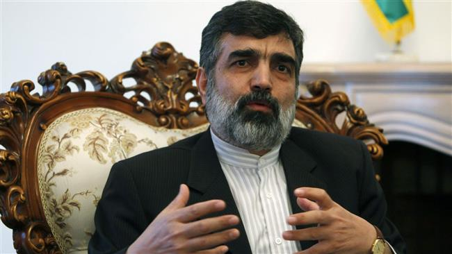 Photo of Iran nuclear issue politically motivated: AEOI