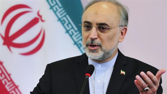Photo of JCPOA, roadmap involve reciprocal measures: Iran