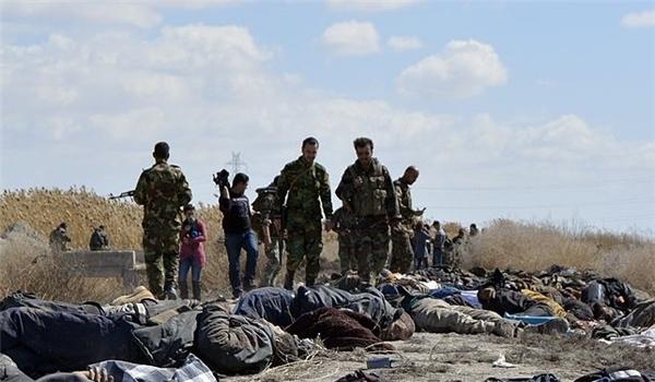 Photo of Syrian Forces Kill Terrorist Commander in Aleppo