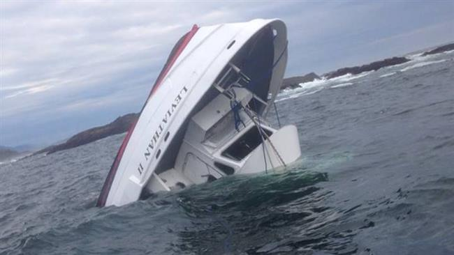 Photo of Five dead as whale-watching boat sinks off Canada coast