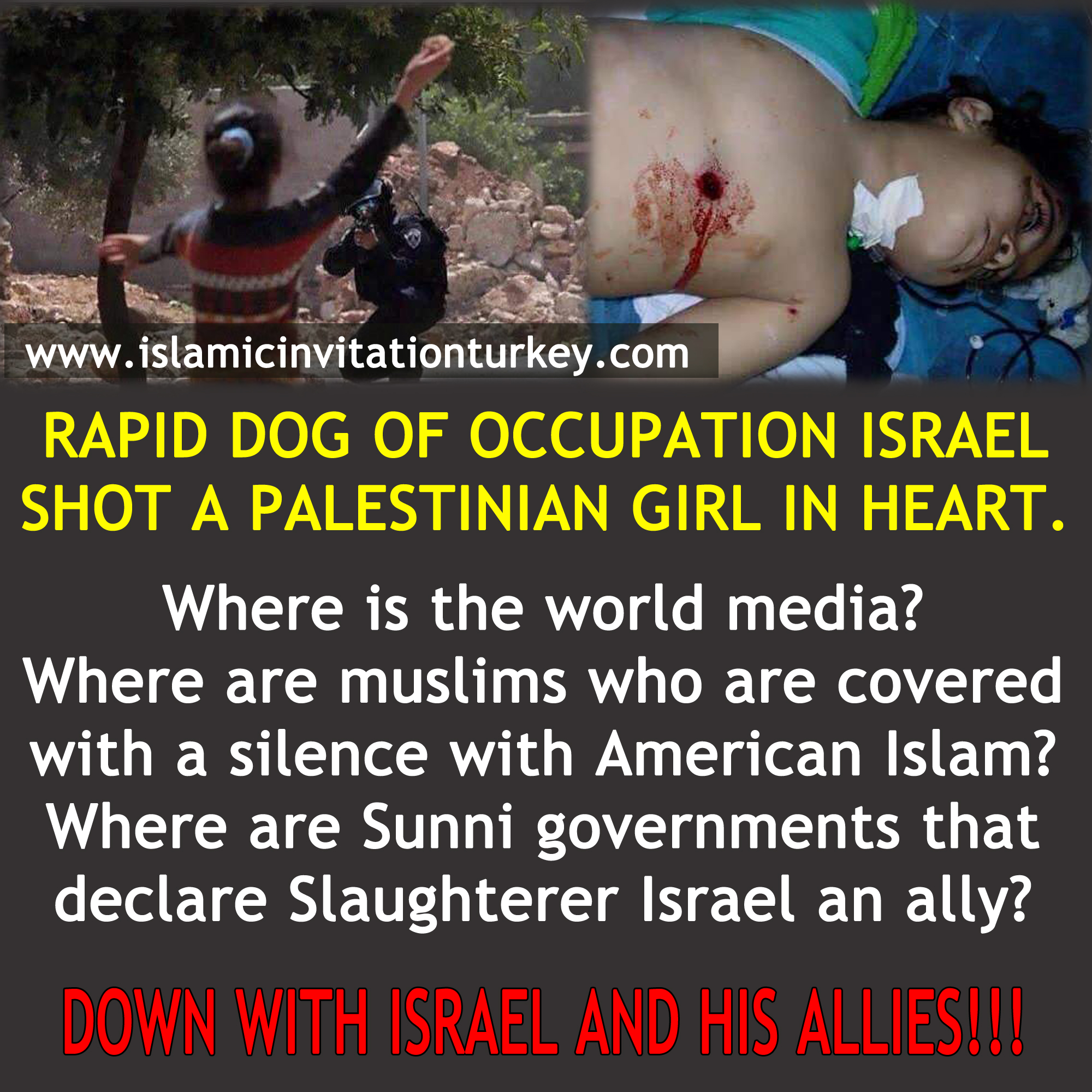 Photo of Rapid Dog israeli soldier shot a Palestinian girl in heart