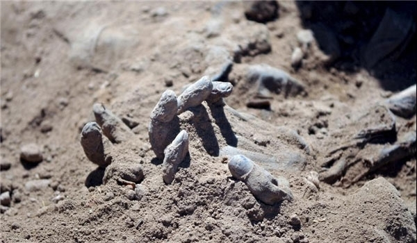 Photo of Syria: Mass Grave Unearthed East of Homs Province