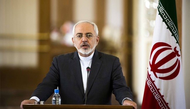 Iran's FM Zarif: Russia's Efforts against ISIS 'Important'