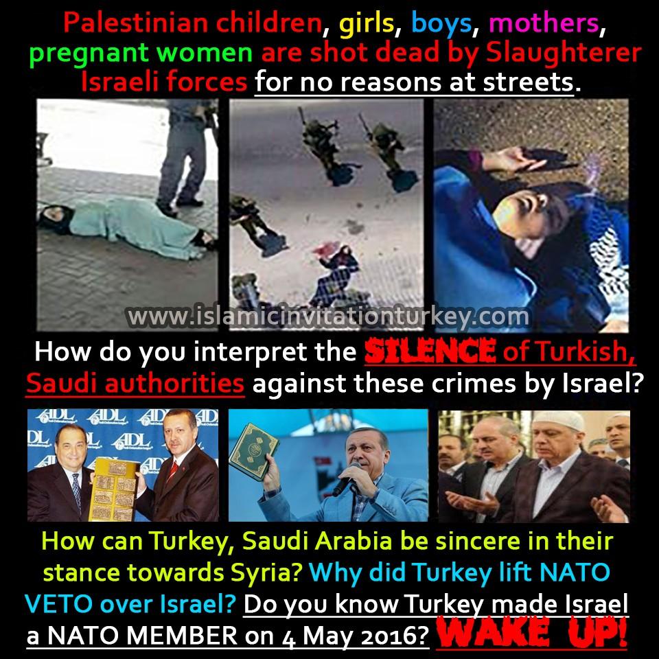 palestine crimes