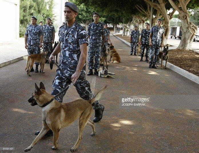 Lebanese-forces-696x535 (1)