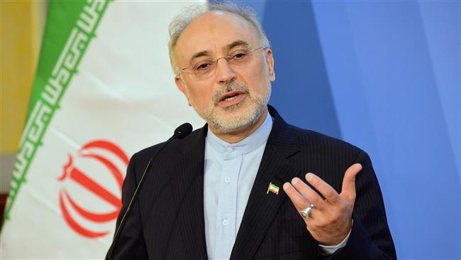 Photo of Israeli nukes threaten region stability, NPT credibility: Iran nuclear chief
