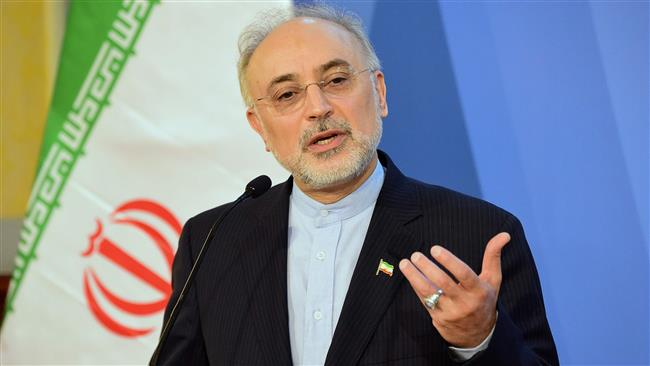Photo of Iran well-prepared to respond to sanctions renewal by US: Salehi