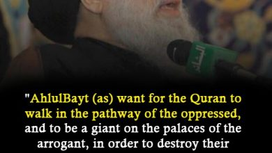 """Photo of Fadlallah, """"AhlulBayt want for Quran to walk in the pathway of the oppressed and to be a giant on the palaces of the arrogant"""""""