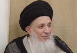Photo of World hold Islam with respect and honor: Ayatollah al-Hakim