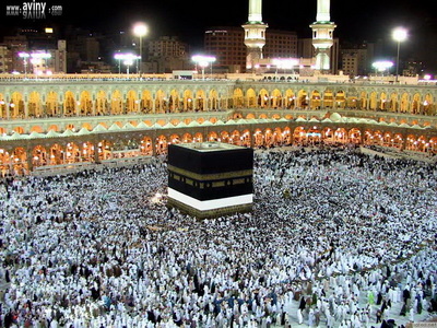 Photo of Saudis accept Iranian conditions for Hajj: Iranian official