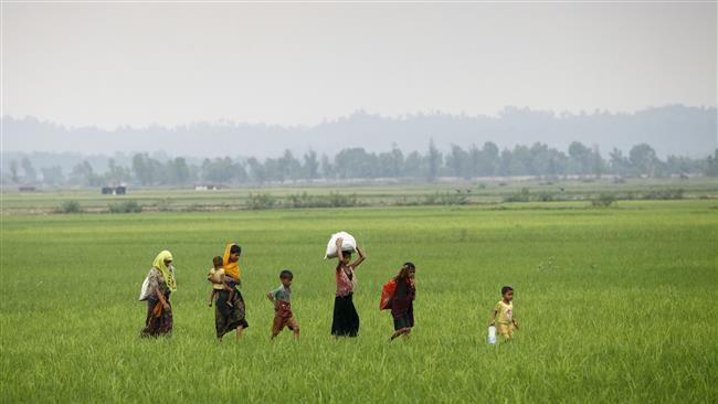 Photo of Myanmar laying landmines near Bangladesh border: Sources in Dhaka
